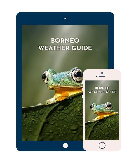 Borneo Weather Guide.jpg