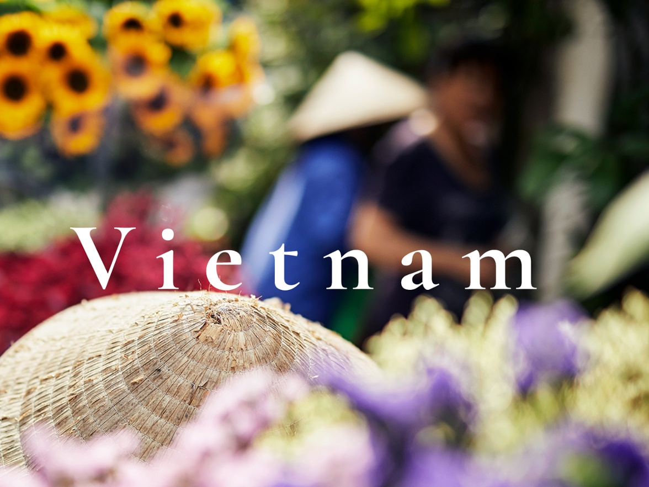 Curious - Vietnam - Revitalise-1