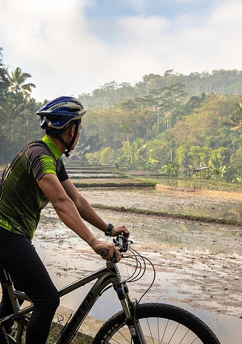 Cycling-gallery
