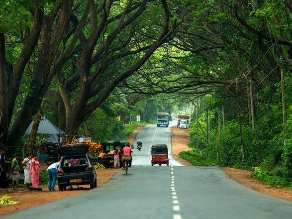 Road to Dambulla