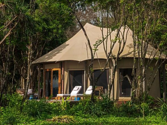 Tents wa ale