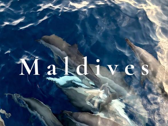 Uncomp - Maldives - Revitalise-1